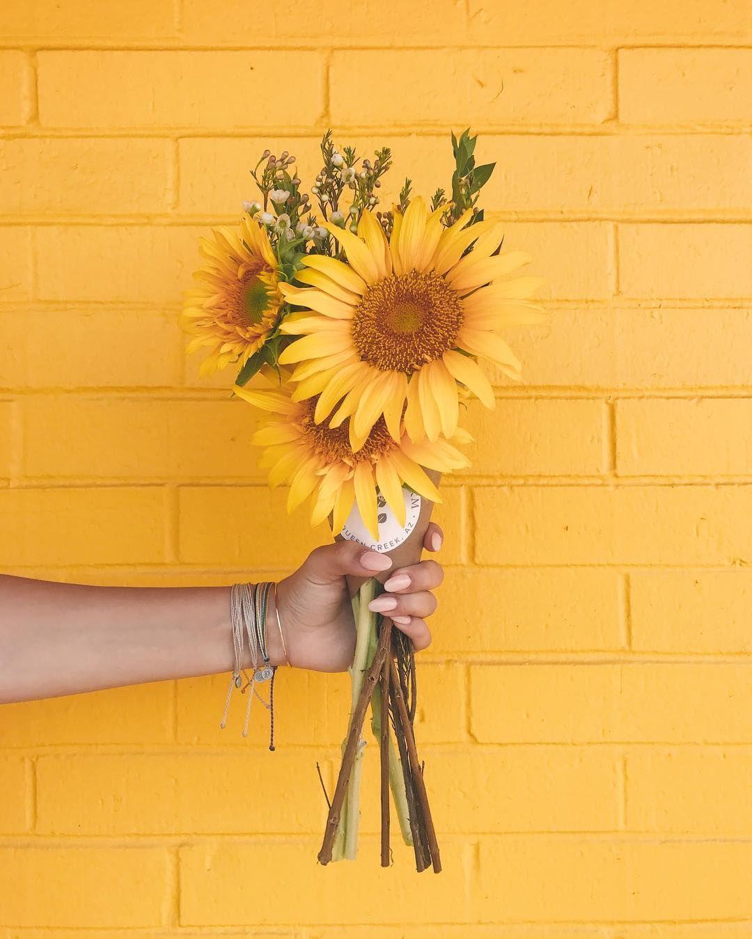 Be the sunshine x jordan.stratman Flower background
