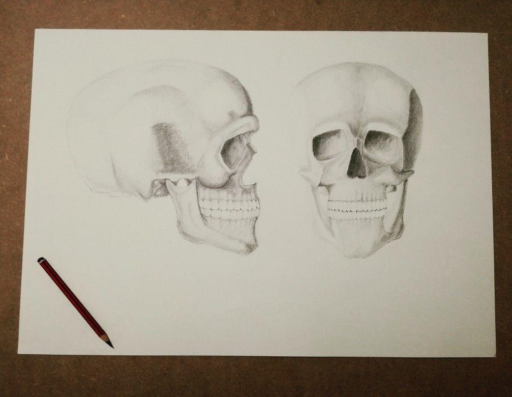 Asombroso Anatomía A2 Hesi Y Fisiología Become Composición ...