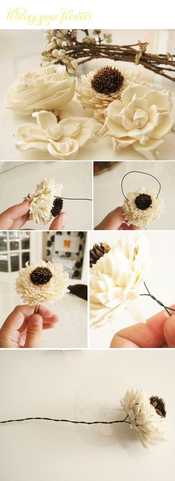 more on diy sola flower bouquets | Wedding Ideas | Pinterest | Sola ...