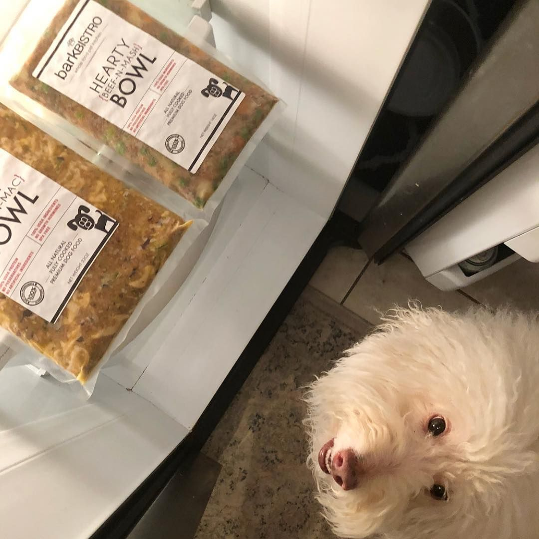 Bark Bistro Company On Instagram It S Dinner 30 My Human Just Gets Me Does Your Human Healthy Dog Food Recipes Dog Food Recipes Human Grade Dog Food