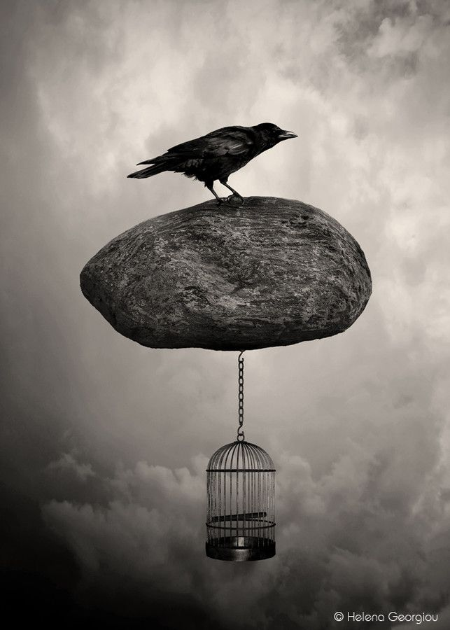 Just freedom by Helena Georgiou on 500px | Freedom pictures, Surreal art,  Art pictures