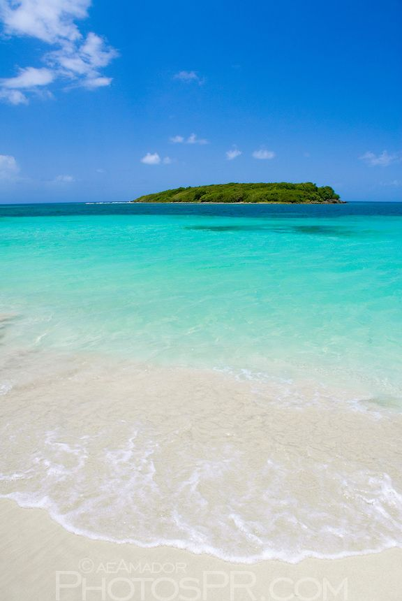 Blue Beach Vieques Puerto Rico My Husband And Family Sunbathed On This The Kids Swam To Other Island I Thought They Were Going Drown