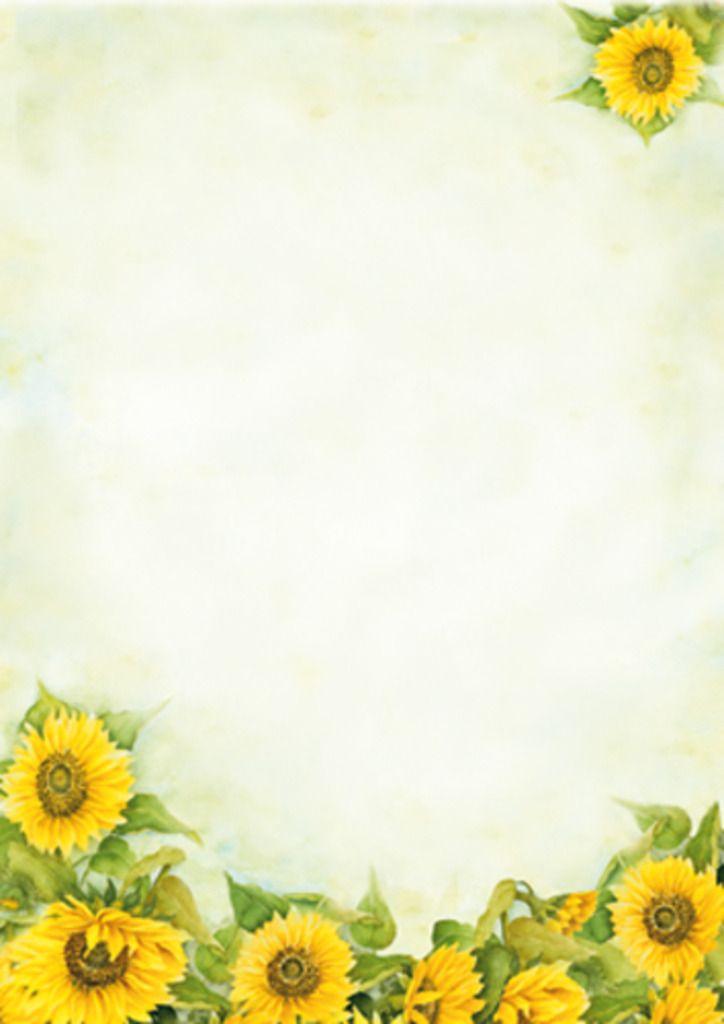 Postpapier 24 vellen A4 Zonnebloemen - Floris