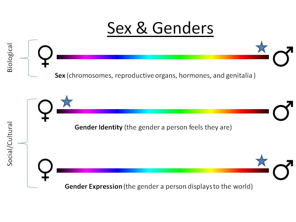 Trans Gender Queer