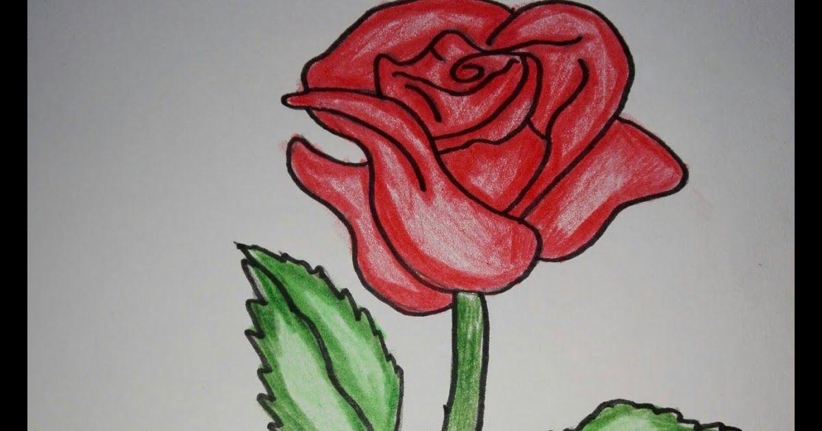 30 Lukisan Bunga Dengan Pensil Warna Menggambar Dan Mewarnai Mawar Youtube Download Sketsa Bunga Matahari Dan Cara Mengga Bunga Gambar Bunga Pensil Warna