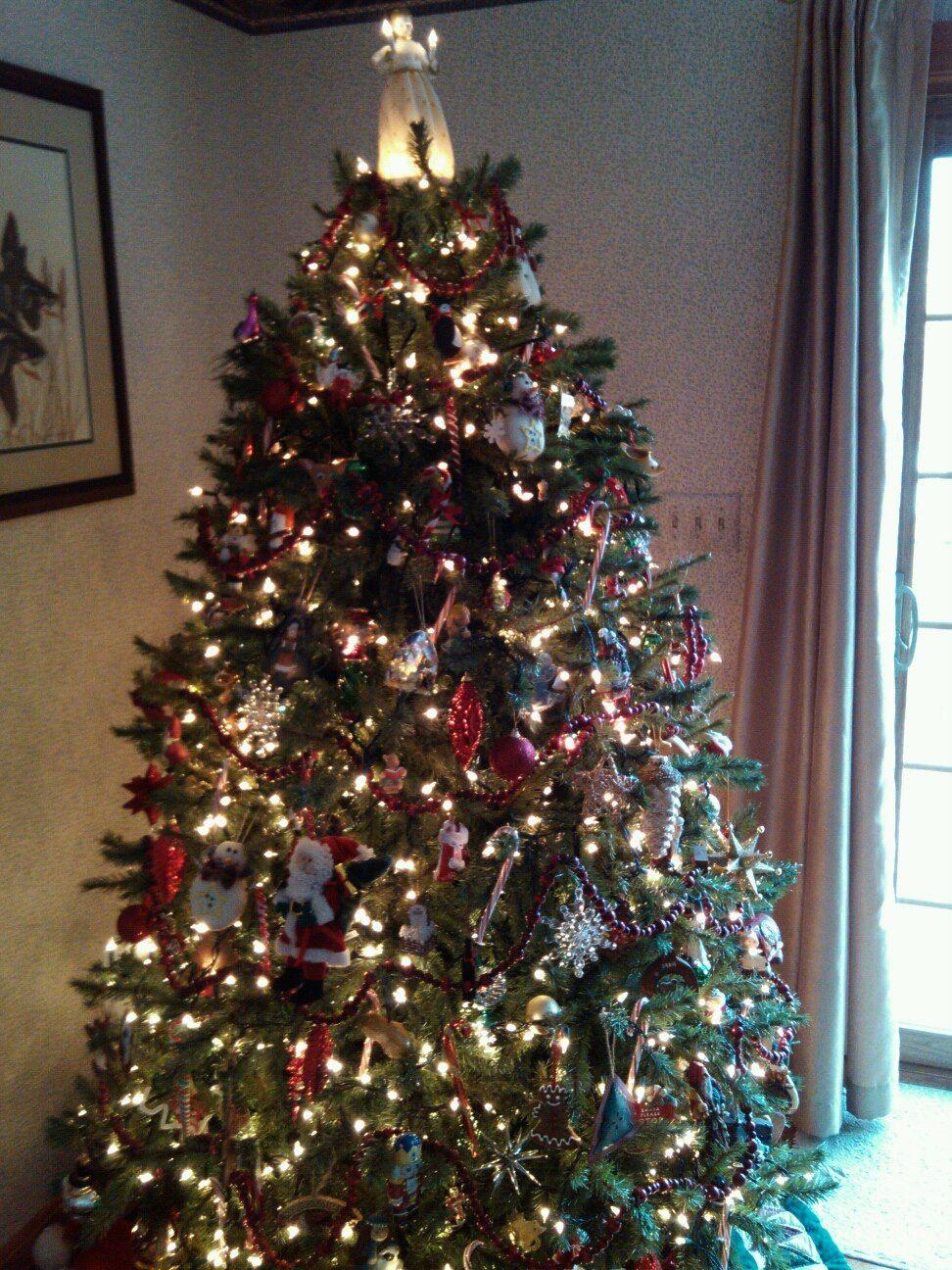 Sweepstakes Country Living Live Christmas Trees Christmas Tree Christmas Tree Decorations