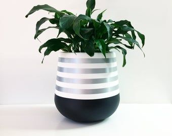 Handpainted lightweight indoor plant pot white and silver is part of Indoor plant pots, Indoor plants, Plants, Plant design, Potted plants, Flower pots - deck or in a covered courtyard  The material of the pot is fibreglass  Medium  35 x 35cm Large  45 x 45cm As the pots are hand painted they are delicate and need to be handled with care  They are intended for indoor use or in a covered outdoor area  Plants should be removed from the pot for watering  The plant is for display purposes and is not included  The shipping rate listed is for major cities within Australia  Shipping to remote areas will be charged at a higher rate  Please contact us for a price