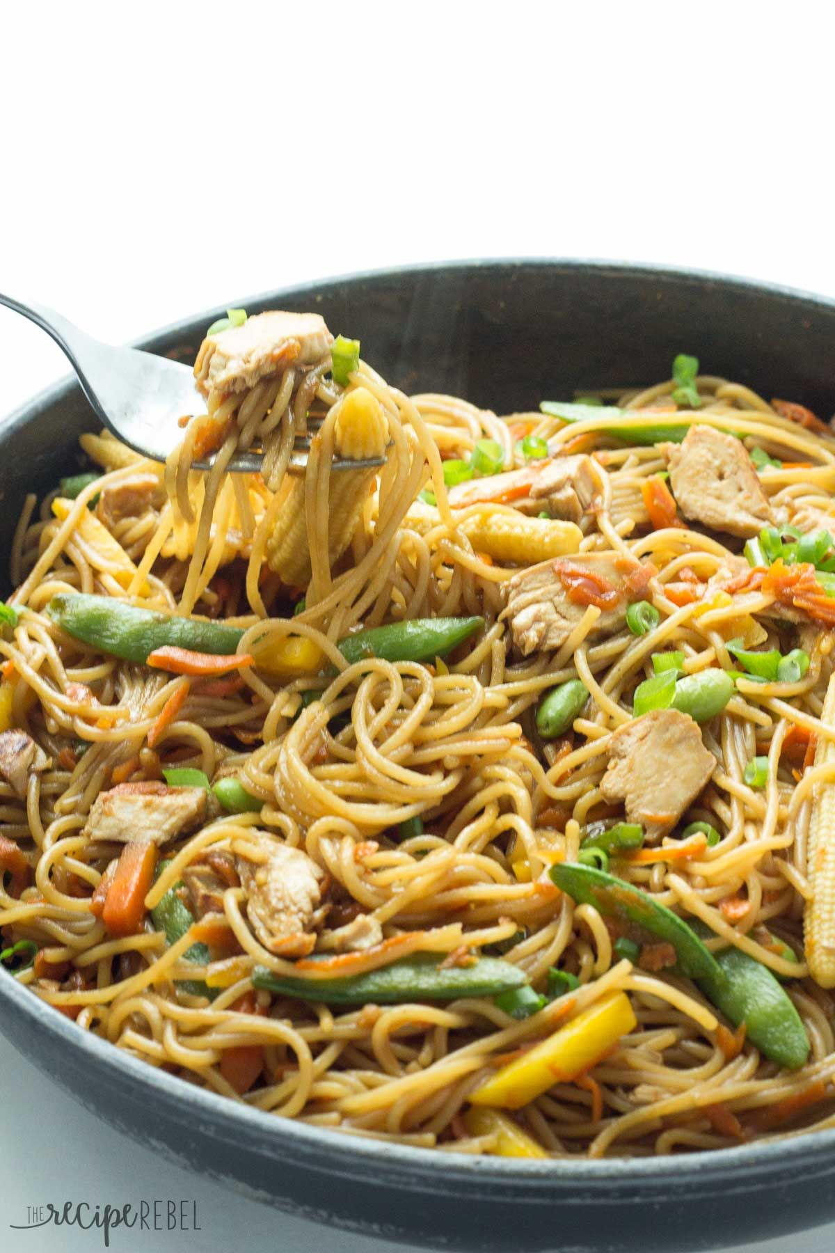 An easy one pot version of chicken chow mein youll never have an easy one pot version of chicken chow mein youll never forumfinder Images