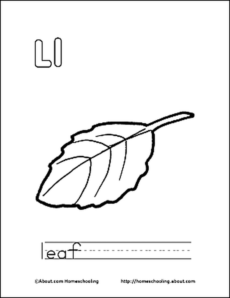 Letter L Coloring Book