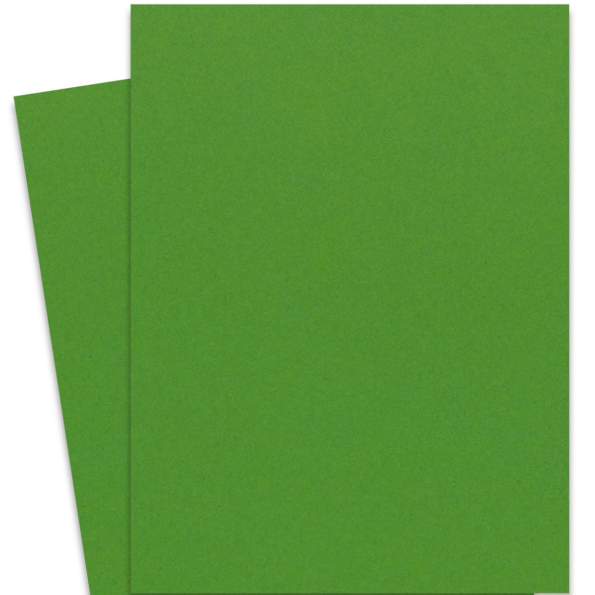 Extract Cactus 28 3 X 40 2 Full Size Cardstock Paper 380 Gsm 140lb Cover 75 Pk Cardstock Paper Card Stock Paper Cactus