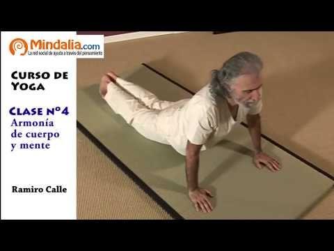 7 Ideas De Yoga Cursos De Yoga Ejercicios De Yoga Yoga