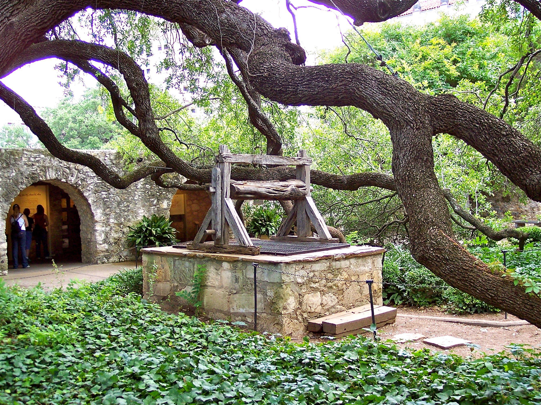 File:Old well and oak tree in Alamo courtyard, San Antonio, Texas ...