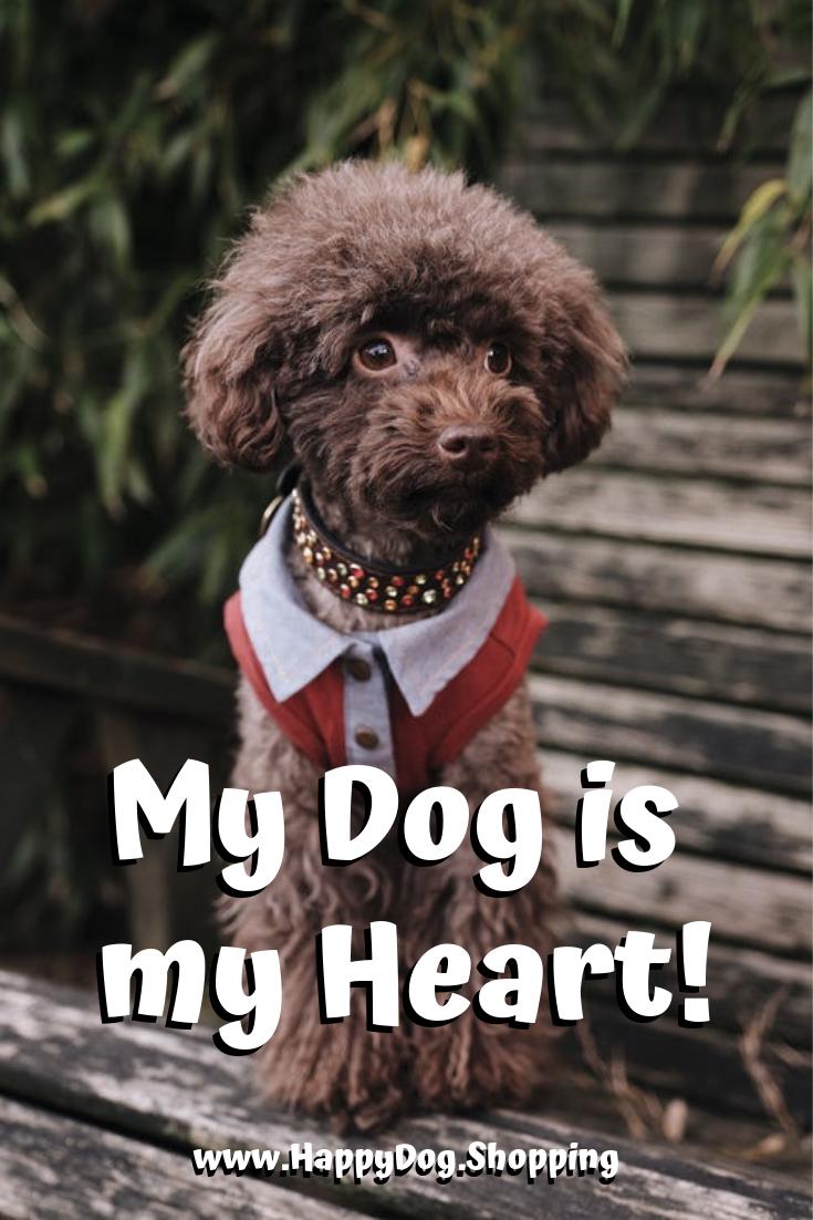 Happy Dog Poems