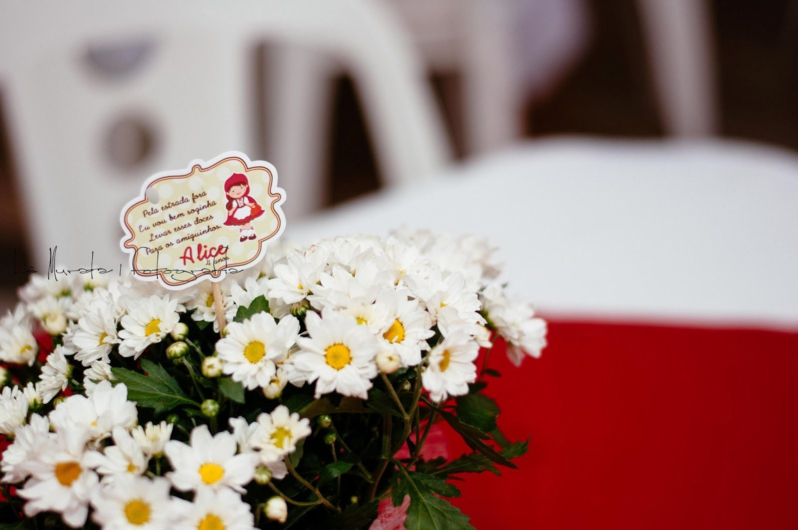 4 anos da Chapeuzinho Vermelho Alice! | Lê Murata | Fotografia