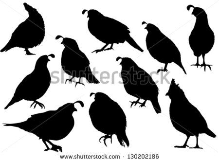 quail silhouettes - stock vector | birds on trees | Pinterest