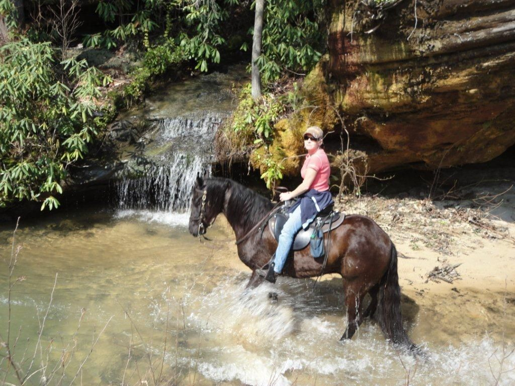 452 best riding trails and vacations images on pinterest horse
