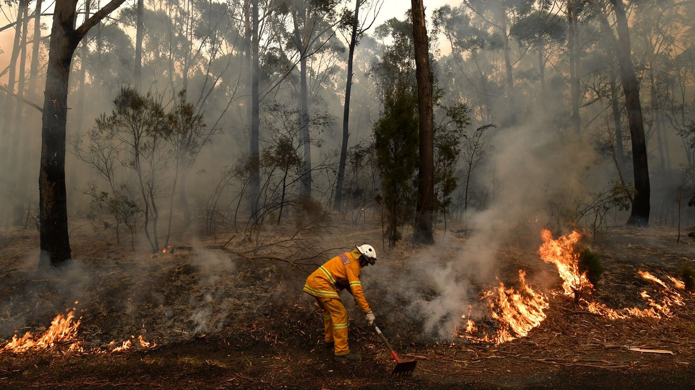 NSW Police have caught 24 alleged firebugs accused of