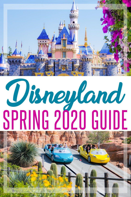 Tips for Spring Break at Disneyland in 2020 #disneylandfood