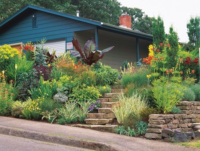 sloped front yard  hot colors minor miracles  jewel box mosaic gardens eugene  or
