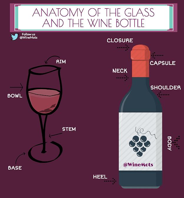 Map Of Bordeaux Wine Regions Infographics Pinterest Vins Und