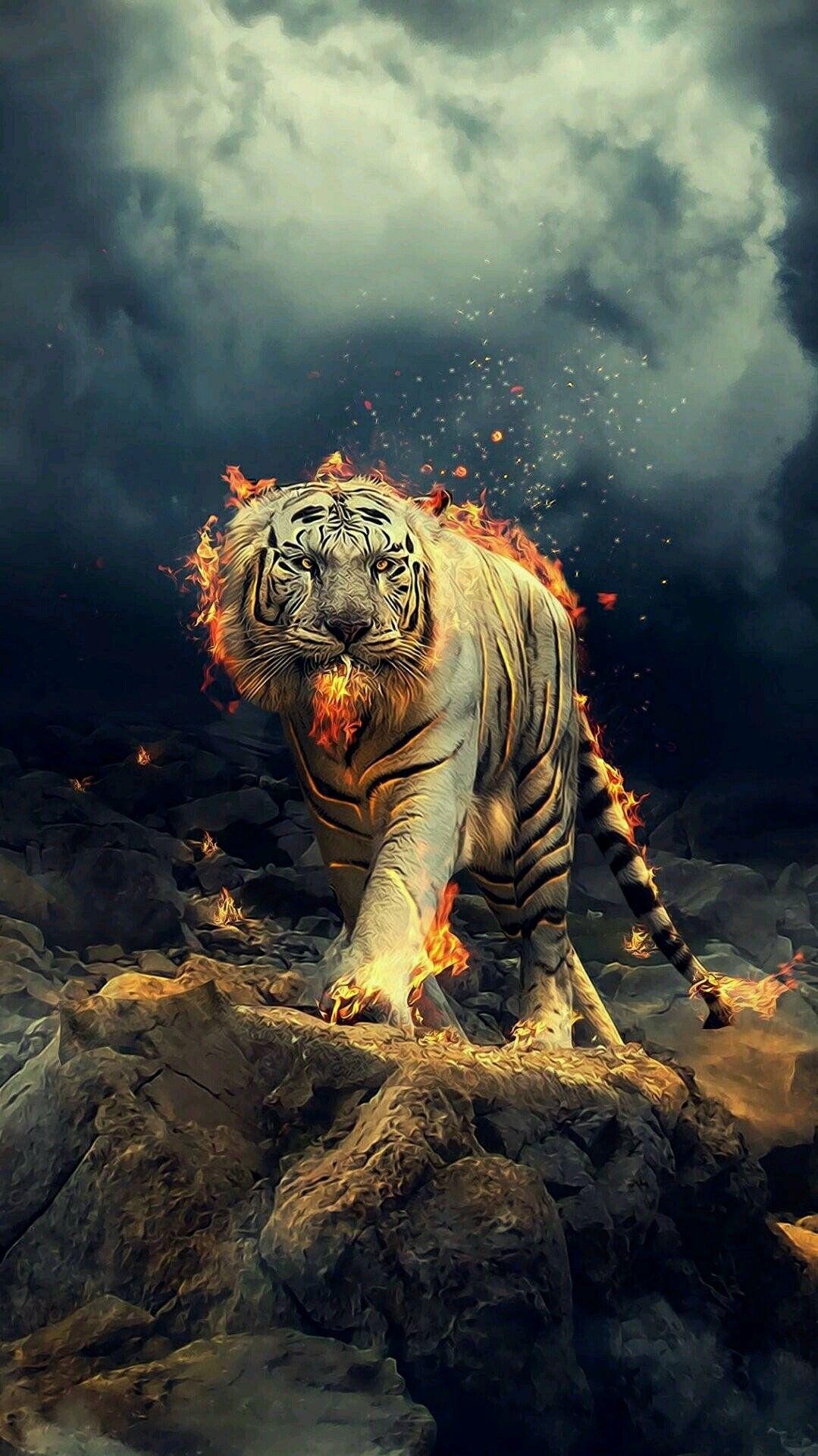 Pin by Sangeet kumaR, on darkify Tiger wallpaper, Wild