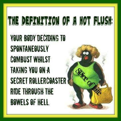 Hot Flush Hot Flushes Hot Flashes Humor