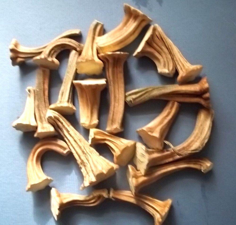 Pumpkin stems for crafts - Dried Pumpkin Stems 20 Various Sizes Primitive Velvet Crafts Thanksgiving 17