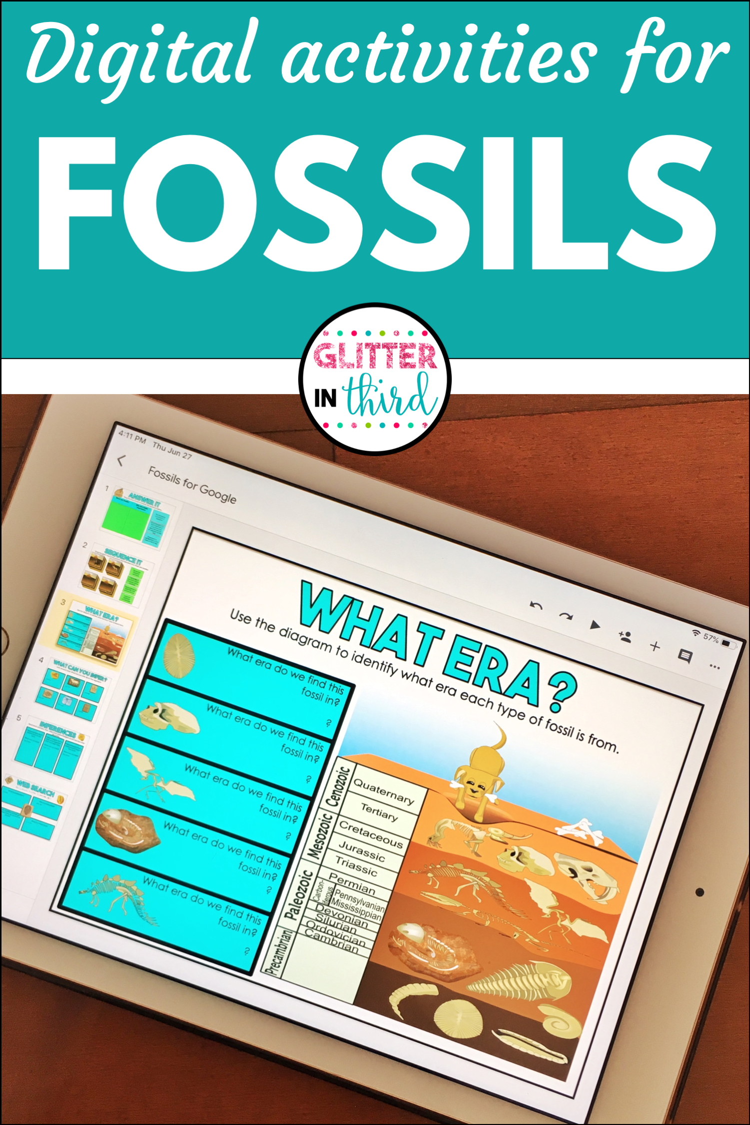 Classroom Distance Learning Fossils