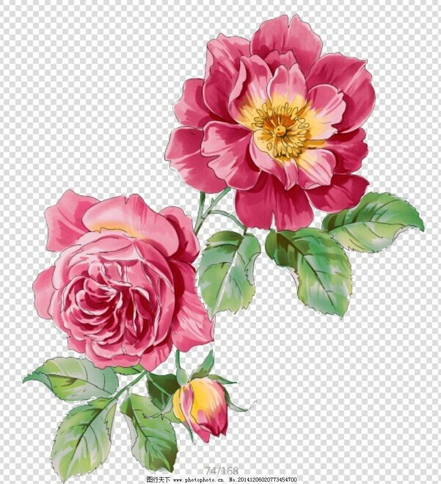 Dark Red Roses Flowers Watercolor Botanical Art Boho: Pin By Hemal Digital On Flower Wallpaper In 2019