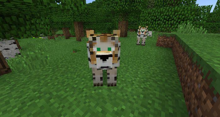 Minecraft Pe Mods Add Crazy - Nnvewga