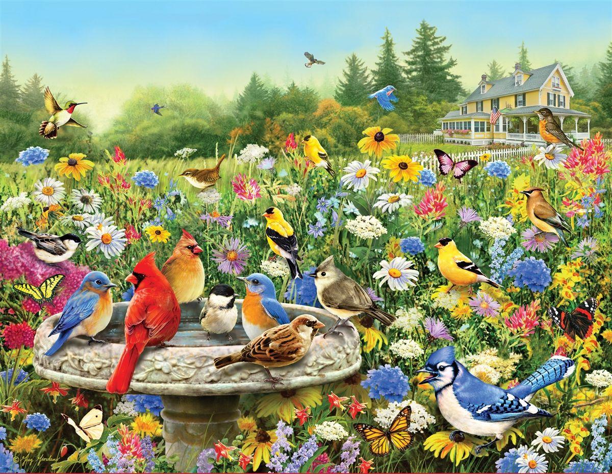 Gibsons Bird Bath Time Puzzle 1000 pièces Puzzle