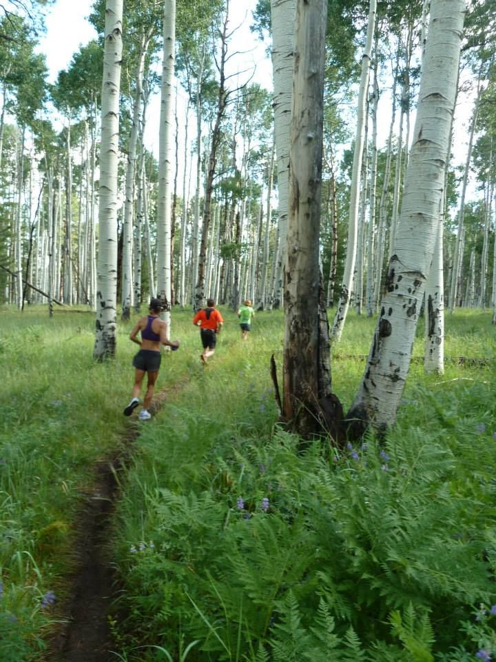 On this cold winter day we're dreaming of summer running amongst the aspens in beautiful Flagstaff, AZ. We hope you can join us this summer (August 3rd-August 8th).