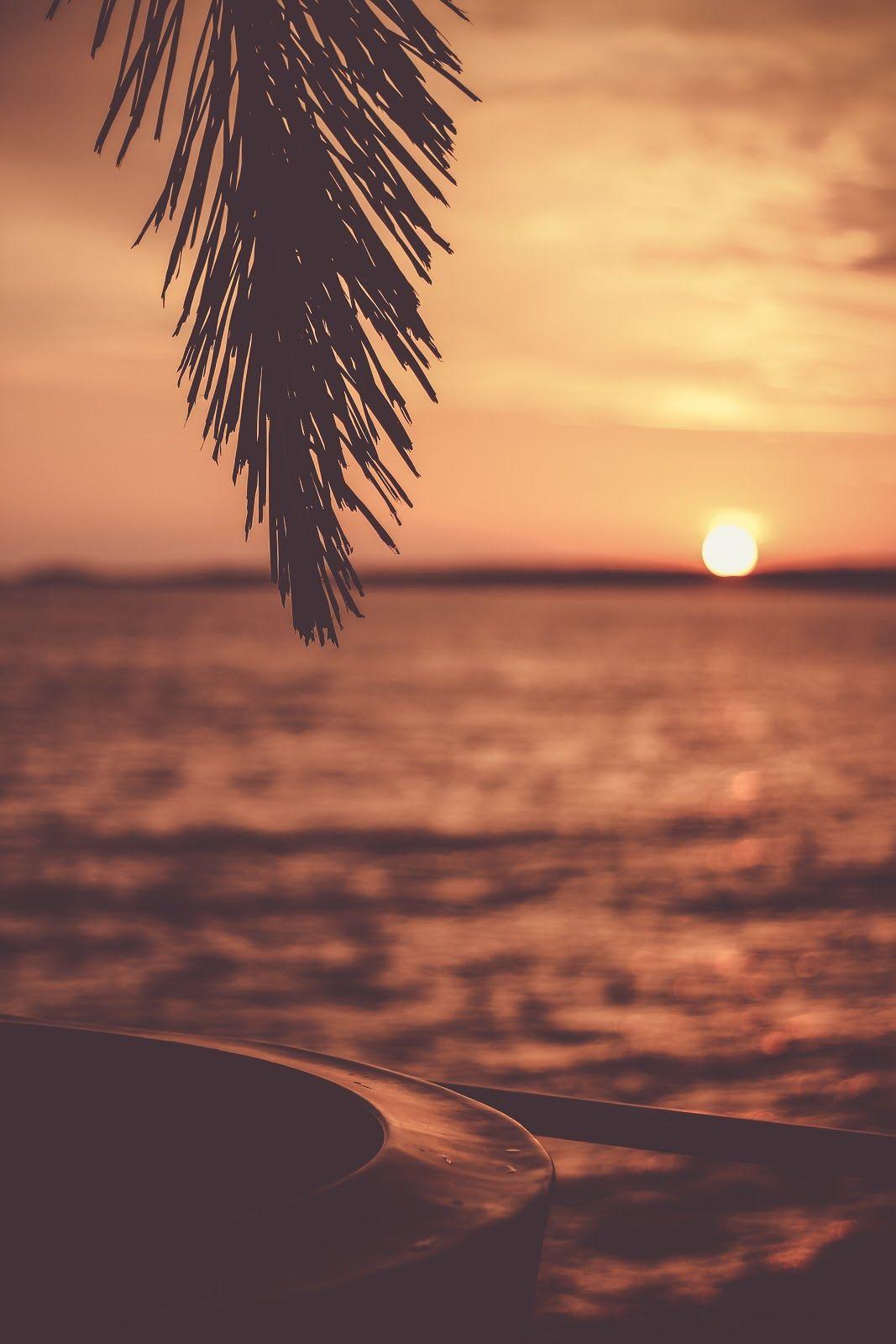Golden Sunset, Tropical, Travel