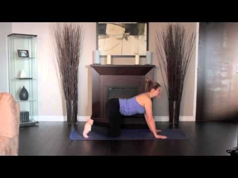 fibromyalgia exercise videos to help motivate and