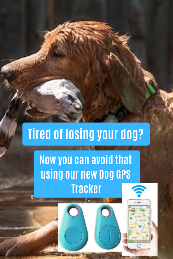 This Mini GPS Dog Tracker is the latest model in the