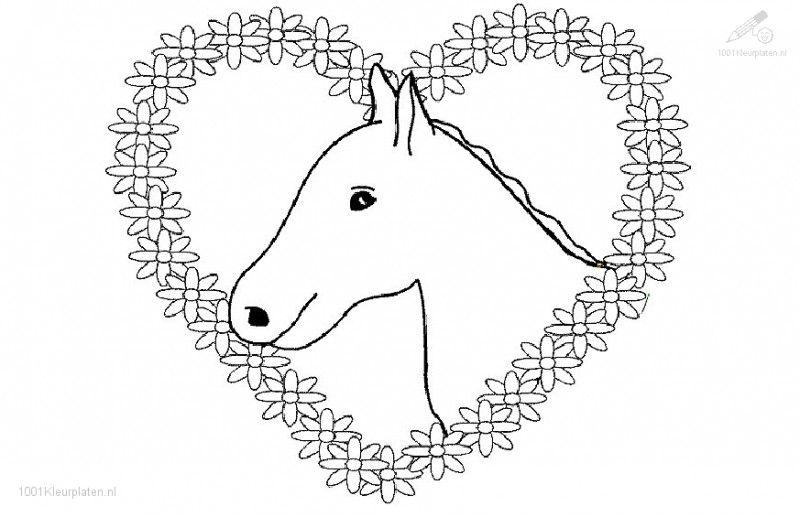 Paarden Kleurplaten Boek.Kleurplaat Paard Met Hartjes Kleurplaten Paard Tekeningen