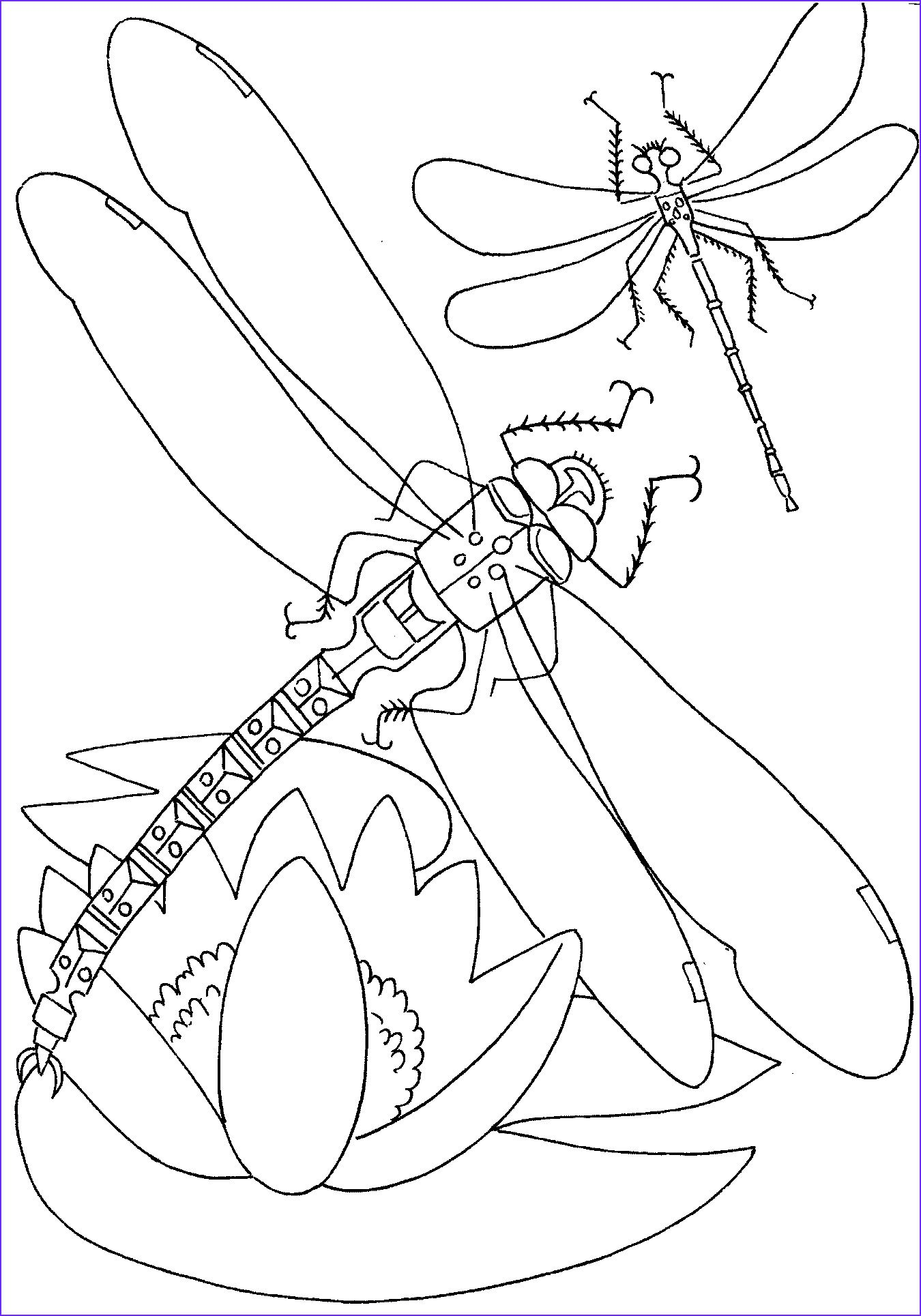 Coloring Sheets For Toddlers Butterfly Coloring Pages For Kids