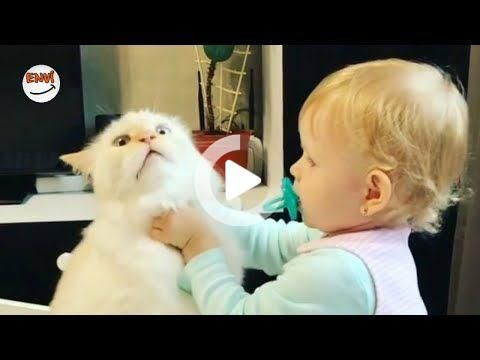 Ekim Ayının En Eğlenceli Kedi ve Bebek Videoları 👶 Komik Bebekler 2018