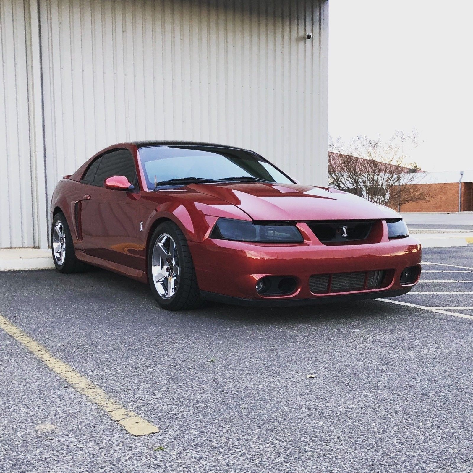 New Edge Mustang Gt For Sale