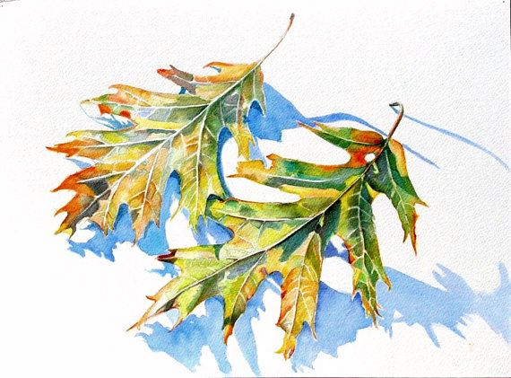Leaves Watercolor Painting Original Art Print Trees Nature