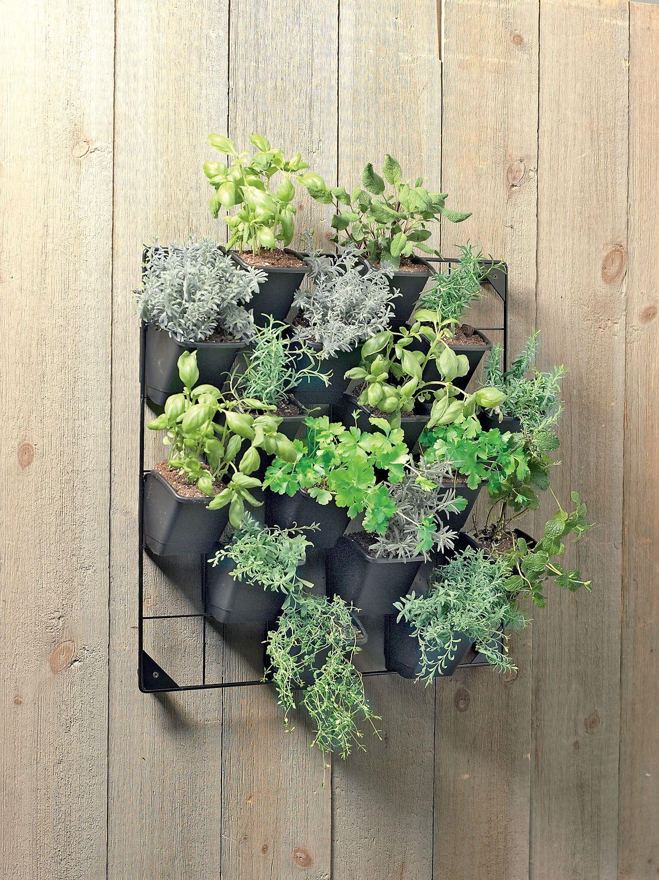 Vertical Fence Or Wall Planters Kit Indoor Outdoor Gardeners Com