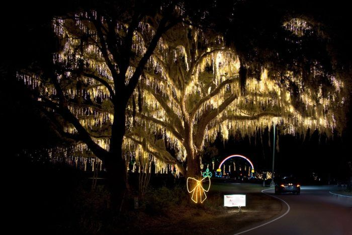 Take A Dreamy Ride Through The Largest Drive Thru Light Show In South Carolina Holiday Festival Of Lights Christmas Lights Outdoor Trees Outdoor Christmas Light Displays Holiday Lights Display