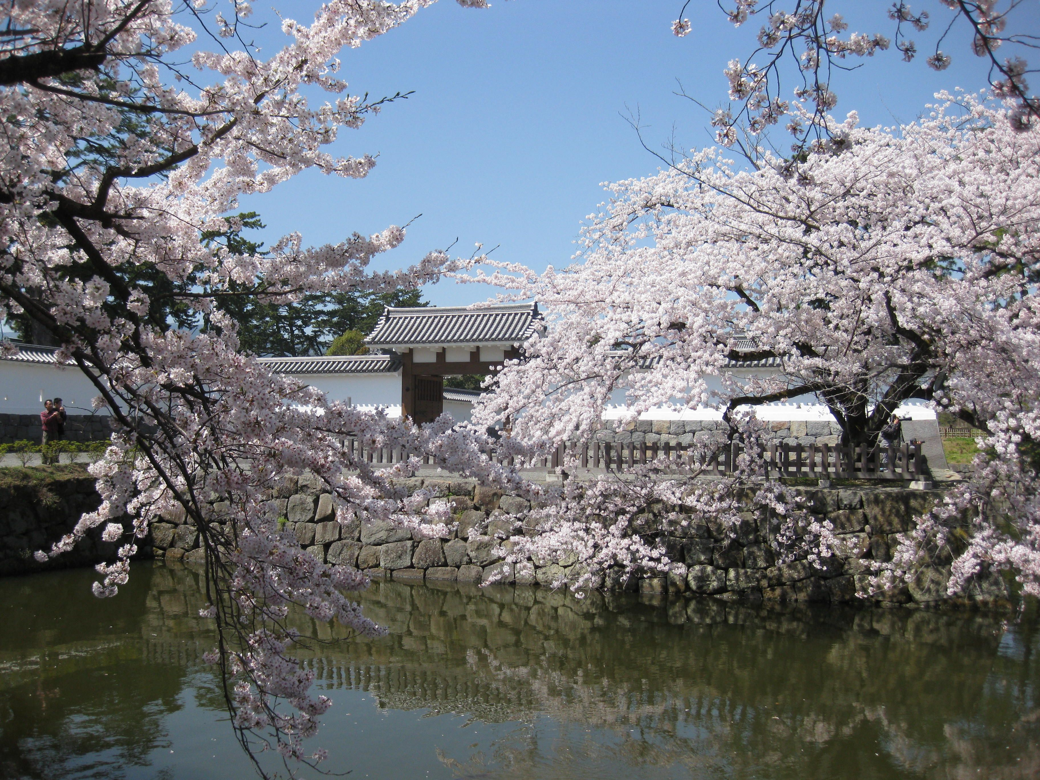 Odawara Castle Uadashi gate