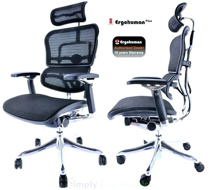 Brilliant Fancy Back Support Desk Chair Graphics Unique Back Support Evergreenethics Interior Chair Design Evergreenethicsorg