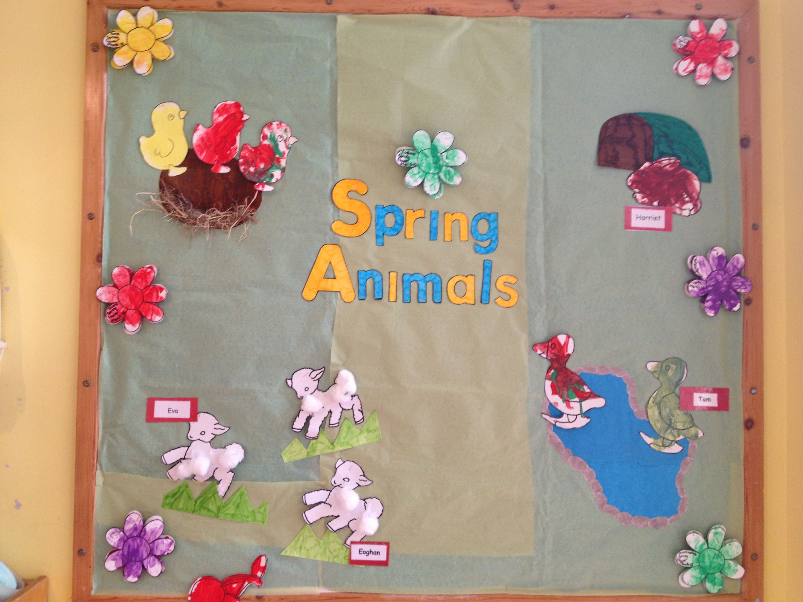 spring animals display board for baby room  Spring animals