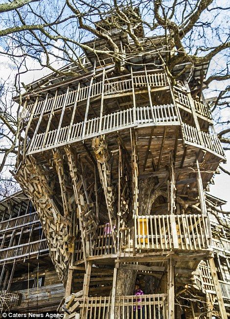 stunning photos show ten story tree house that makes swiss family robinson looks like amateurs and the builder says it was commissioned by god
