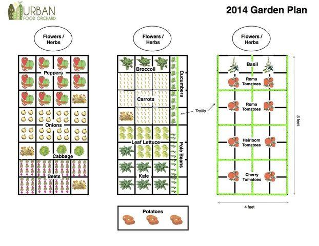 Plant Spacing Sfg Garden Planning Layout Garden Layout