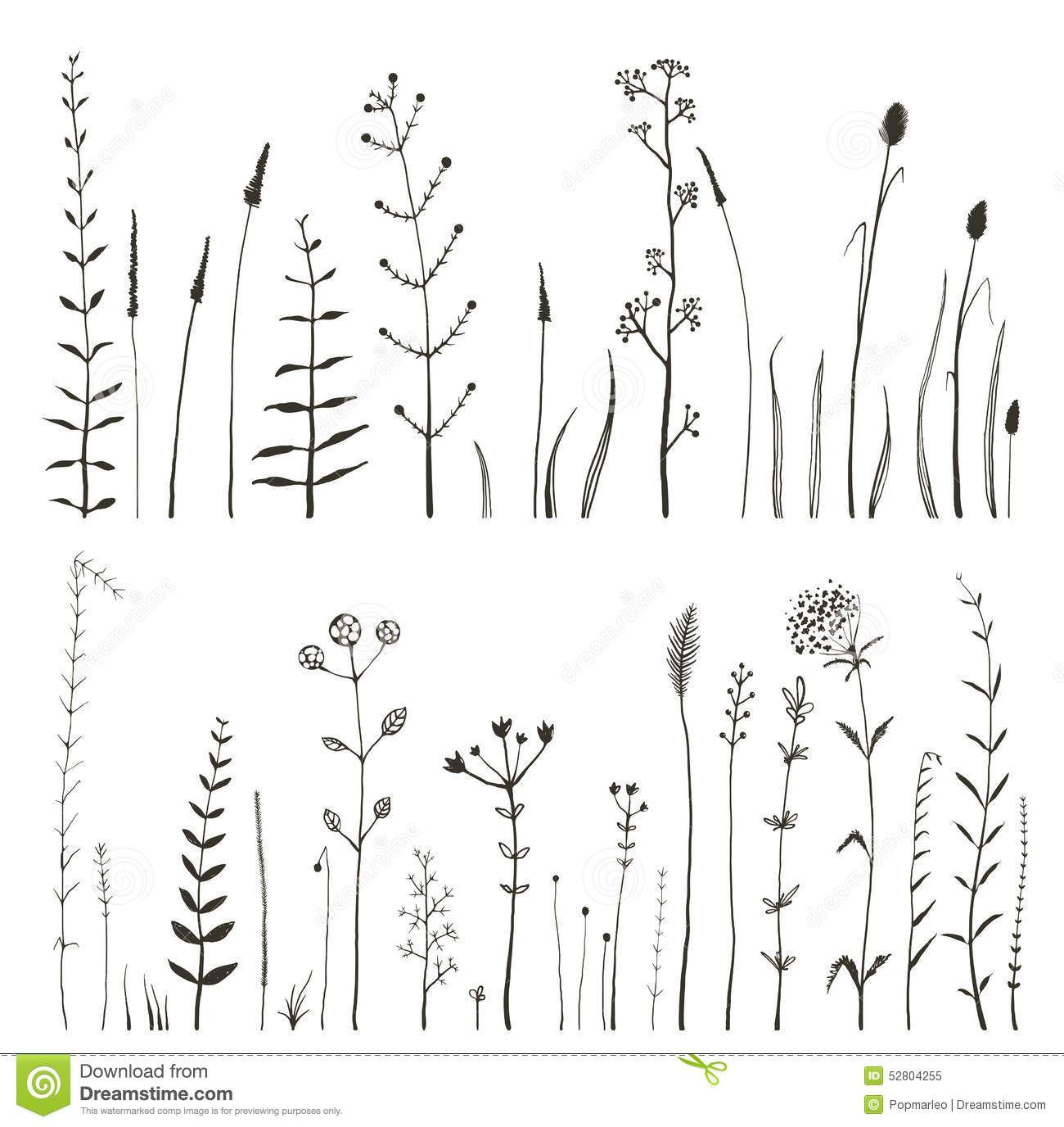 Line Art Doodles : Sketchy wild field flowers and grass on white royalty free