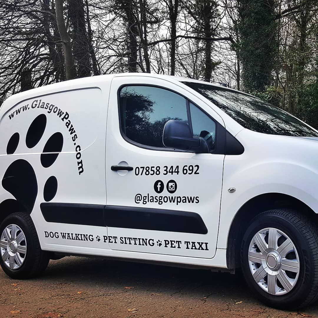 Glasgow Paws On Patrol Personalised Professional Petcare We Are Professionally Insured And Vetted To Care F Pet Taxi Dog Walking Business Dog Walking