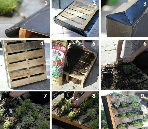 Bellissima idea per coltivare in poco spazio